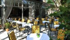 Gartengarnituren mit gelber Auflage im Parkhotel Schönbrunn